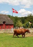 The Funen village — Stock Photo