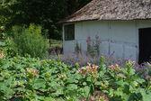 The funen village in Denmark — Stock Photo