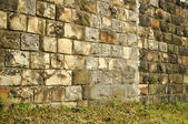 Slanted dirty brick wall with grass background — Stock Photo
