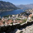 Stock Photo: Kotor
