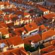 Roofs — Stock Photo #3574985