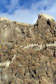 Château sur le rocher — Photo