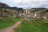 Artemis temple — Stock Photo