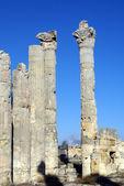 Columns — Stok fotoğraf