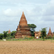 Field and pagodas — Stock Photo
