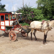 Stock Photo: Horse cart