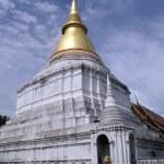 Stupa — Stock Photo #3618795