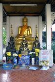 Buddhas — Stock Photo