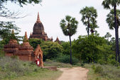 Road, palm trees and brick temple in Bagan — Stock Photo
