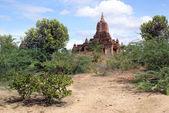 Voetpad aan de pagode — Foto de Stock