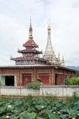 Stupas and lotuses — 图库照片