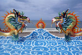 Dragons — Stock Photo