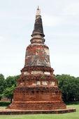 Stupa and grass — Stock Photo