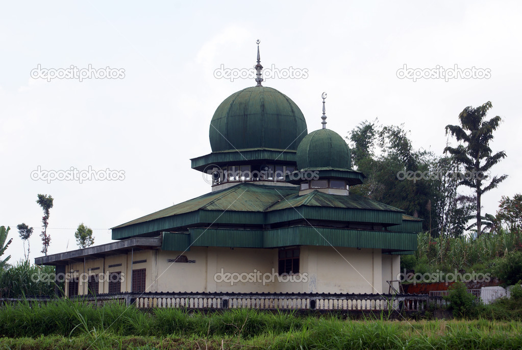 Green mosque on the field in Sumatra, Indonesia               Stock Photo #3619813