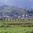 Plateau Dieng — Stock Photo