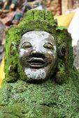 Face of green demon — Stock Photo