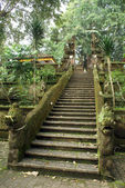 Zelený schodiště — Stock fotografie