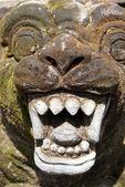 Teeth — Stock Photo