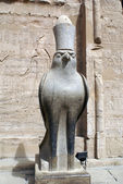 Horus — Stock Photo