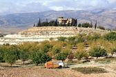 Autumn in Bekaa valley — Stock Photo
