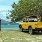 Постер, плакат: Yellow car