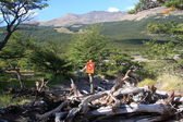 No path thrpugh the restricted area in national park, Chalten, Argentina — Stock Photo