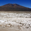 Mountain and salt desert — Stock Photo