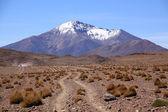Desert and mountain — Stock Photo