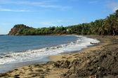 Caribean coast — Stock Photo