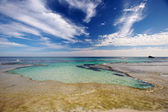 Rottnest Island — Stock Photo