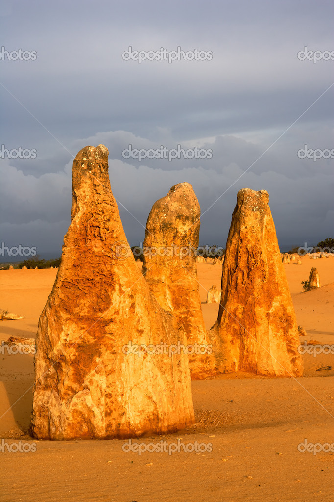 The Pinnacles Desert in the heart of the Nambung National Park, Western Australia. — Stock Photo #3646872
