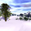 Fantasy island winter scene — Stock Photo #3504087