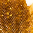 Royalty-Free Stock Photo: Honeycombs