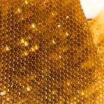 Honeycombs — Stock Photo