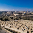 Cityscape of Jerusalem — Foto Stock