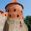 trakai island castle — Stock Photo #3842747