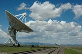 VLA afternoon — Stock Photo