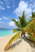 Beautiful Solomon Bay (USVI) — Stock Photo