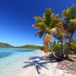 Beef Island Beach (BVI) — Stock Photo