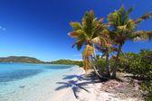 Beef Island Beach (BVI) — Stock Photo