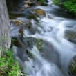Stock Photo: Bluff Creek State Natural Are- Wisconsin