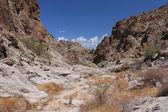 Harsh terrain in Nevada — Stock Photo