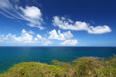 Beautiful coastline of Saint Kitts — Stock Photo