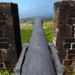 Stock Photo: Cannon at Brimstone Hill Fortress