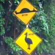 Постер, плакат: Cassowary Sign Queensland Australia