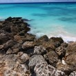Rocky Coast of Barbados — Stock Photo #3702228