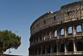 Colosseum, Rome, Italy — Stock Photo