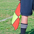 Soccer Referee With Flag — Foto Stock
