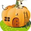 House pumpkin — Stock Vector