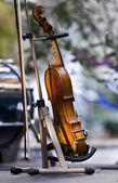 Violin — Stock Photo